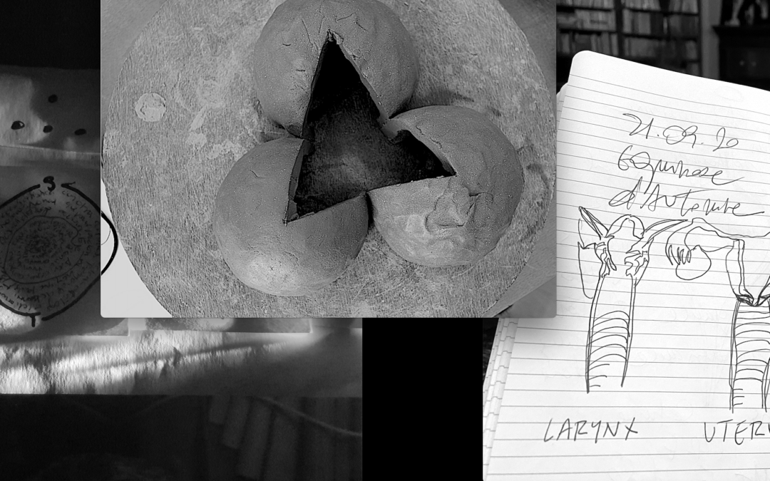 Réveiller l'invisible, billet 7 : LARYNX & UTERUX