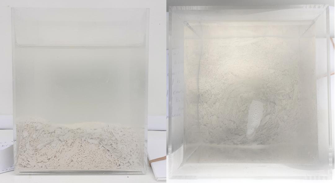 PASSAGE(S) 15 L'acqua/bianca/della/carne/