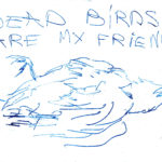 Dead birds are my friends